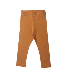 Leggings - orange - Petitflora